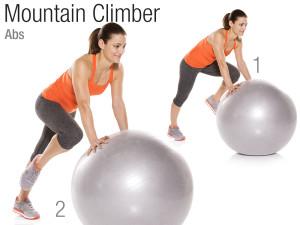Stability ball alpiniste