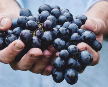 13 la plupart des aliments anti-inflammatoires que vous pouvez manger