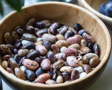 Les haricots sont-ils des légumes?
