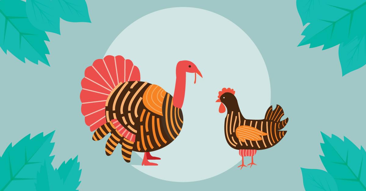 Dinde vs Poulet: Qui a plus de protéines?