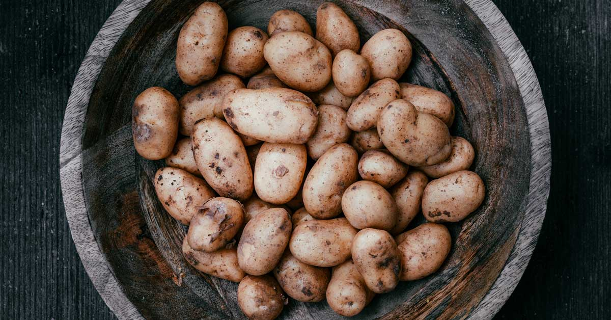 Manger des pommes de terre crues: saines ou nocives?