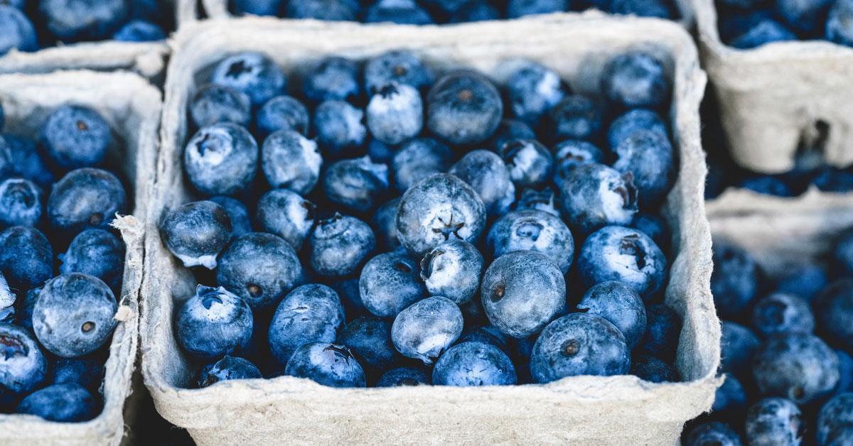 10 avantages prouvés de la santé des bleuets