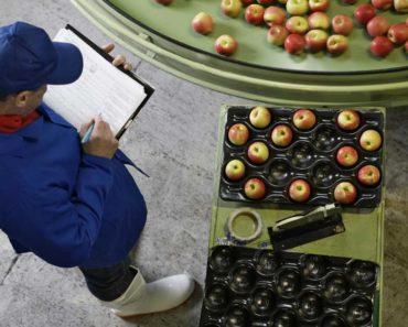 La sale douzaine: 12 aliments riches en pesticides