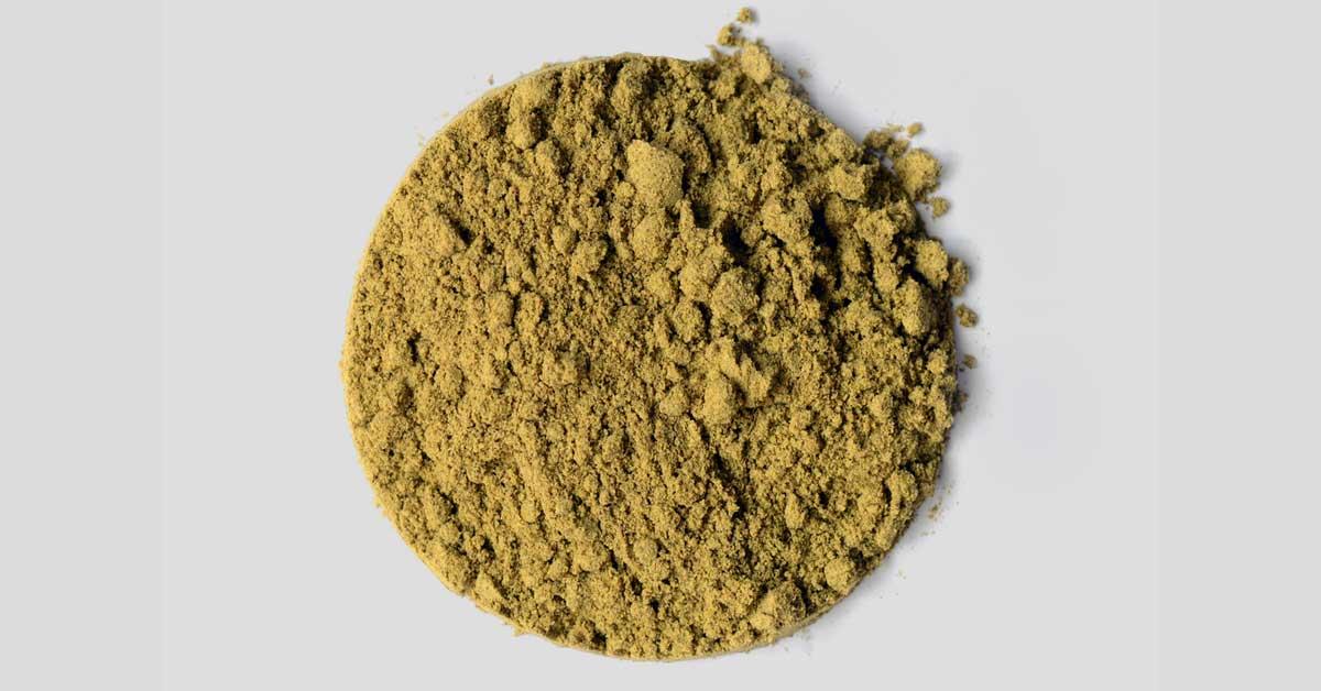 Protéine de chanvre en poudre: La meilleure protéine à base de plantes?