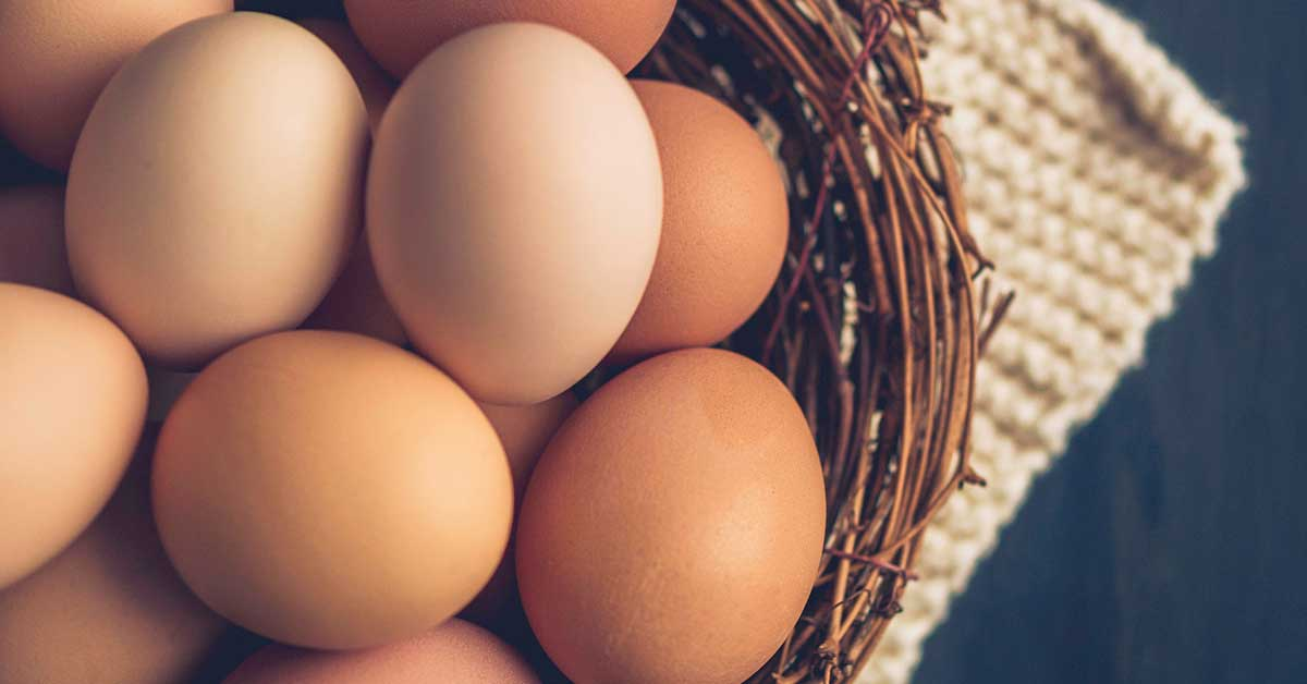 Top 10 des bienfaits des œufs sur la santé