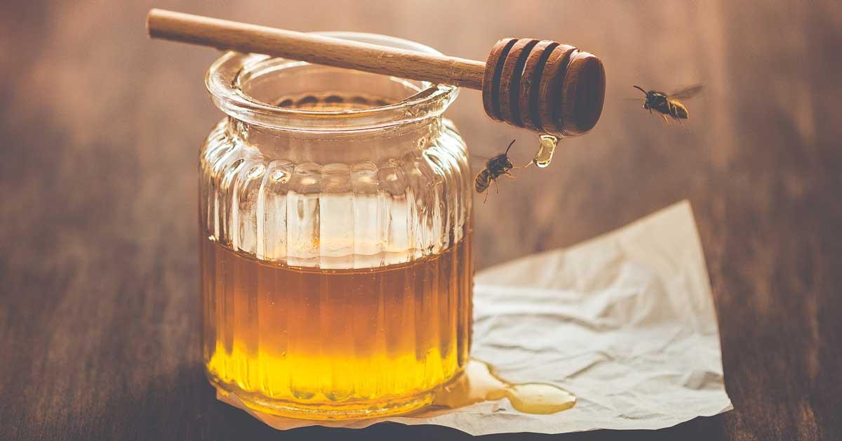 Est-ce que le miel va jamais mal? Ce que vous devriez savoir