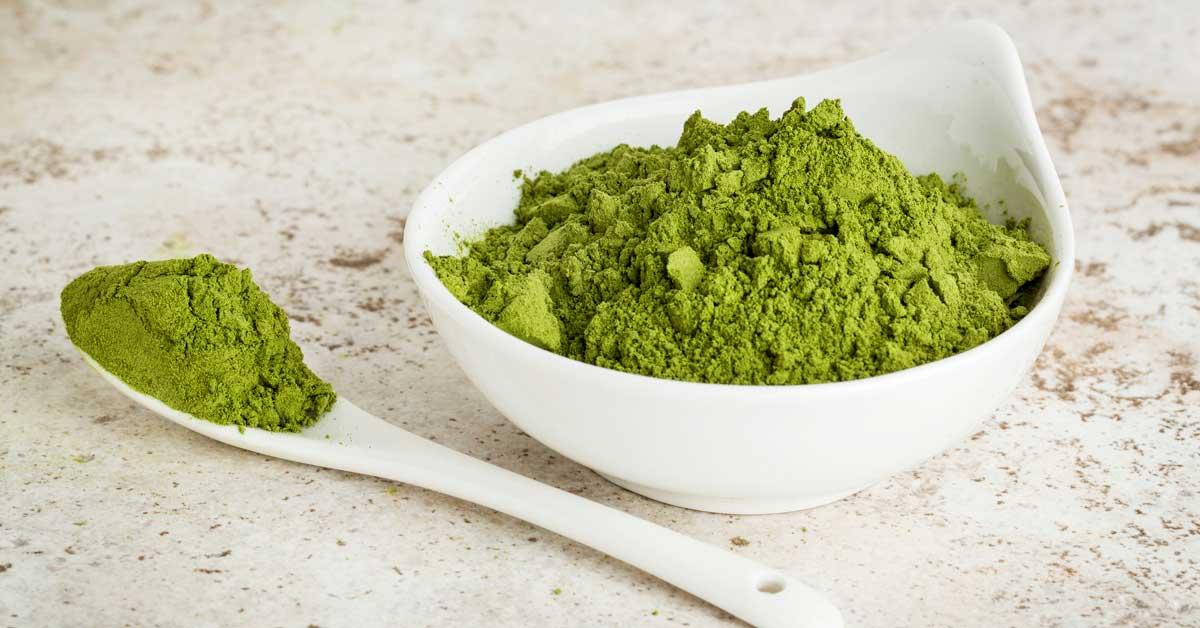 6 bienfaits scientifiques du moringa oleifera sur la santé