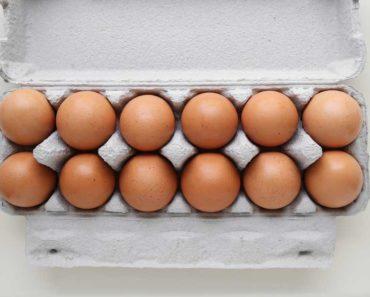 Pourquoi les œufs sont-ils bons pour vous? Un super aliment à base d'oeufs