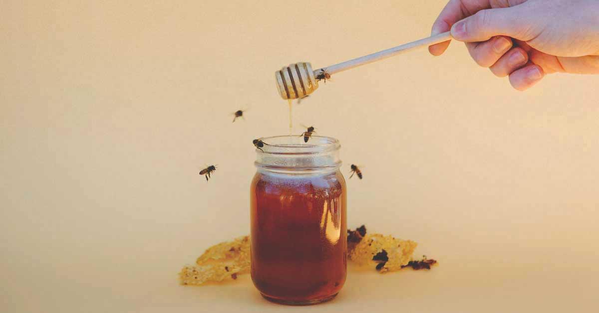 7 bienfaits du miel de manuka sur la santé, fondés sur la science