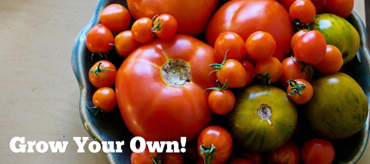 grow-votre-propre-jardinage