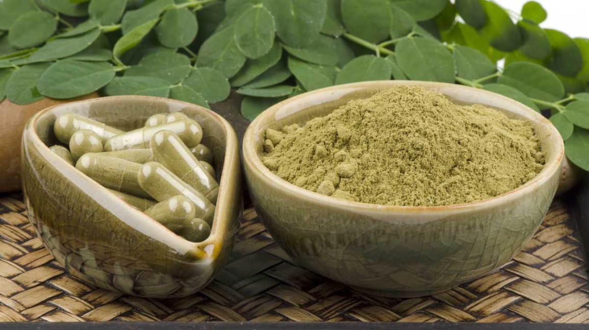 Moringa oleifera en poudre et capsules