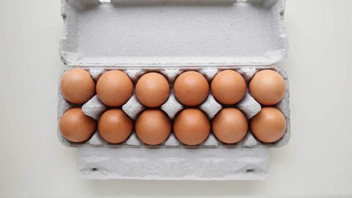 Pourquoi les œufs sont-ils bons pour vous?