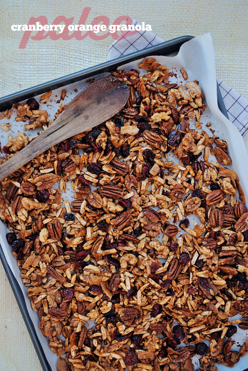 l'image paléo-granola