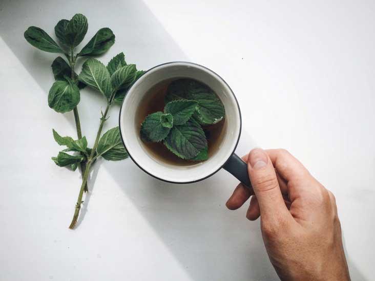 8 bienfaits de la menthe pour la santé