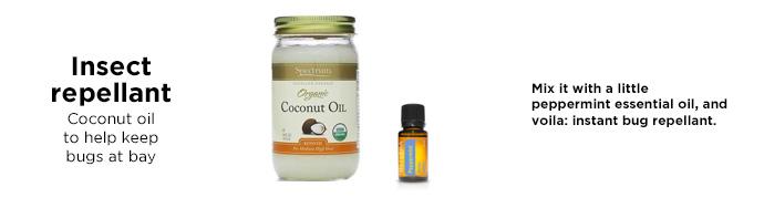 -bug-huile de coco pulvérisation