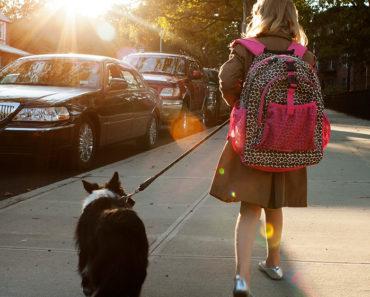 Les chiens de thérapie peuvent aider les enfants ayant des problèmes d'élocution