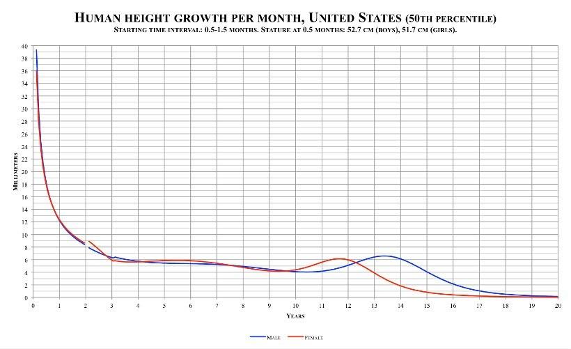 Croissance de la taille humaine par mois