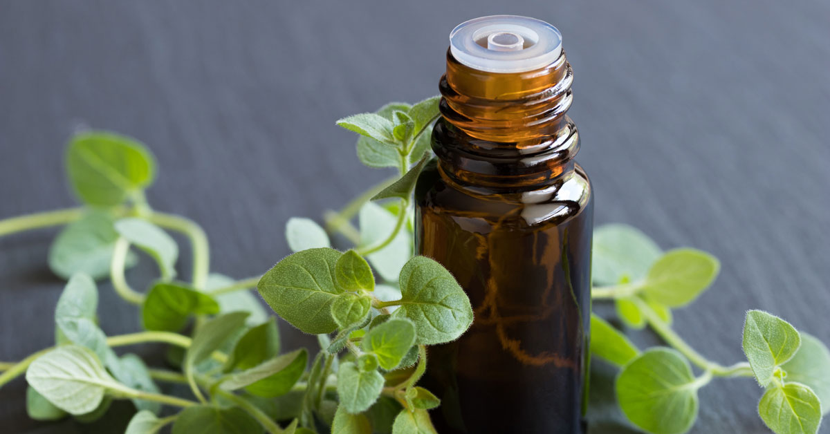 9 avantages et utilisations de l'huile d'origan