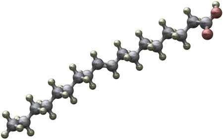 Molécule d'acide gras