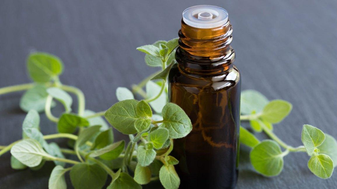 Avantages de l'huile d'origan et huile