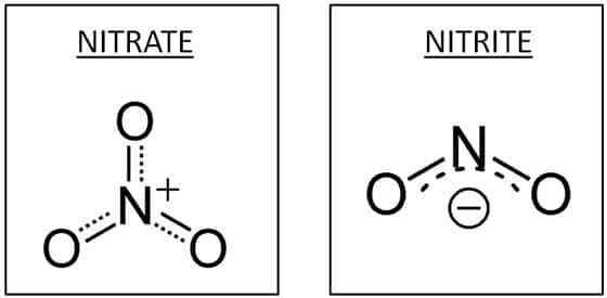 Structure moléculaire des nitrates et des nitrites