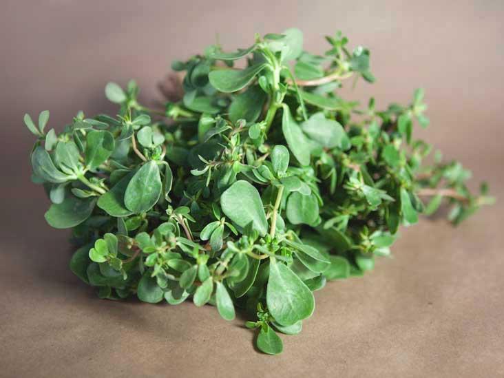 """Purlane - Une savoureuse """"mauvaise herbe"""" chargée d'éléments nutritifs"""