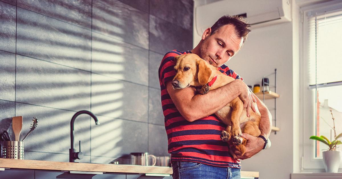 Qu'est-ce que les animaux de soutien émotionnel font exactement? Pour ceux qui en ont besoin, beaucoup