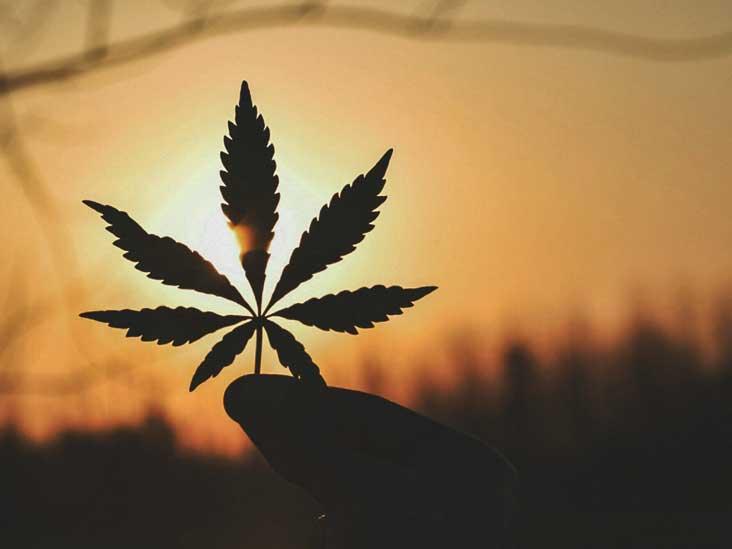 Un médicament contre l'épilepsie pourrait-il modifier la politique fédérale sur la marijuana? Probablement pas