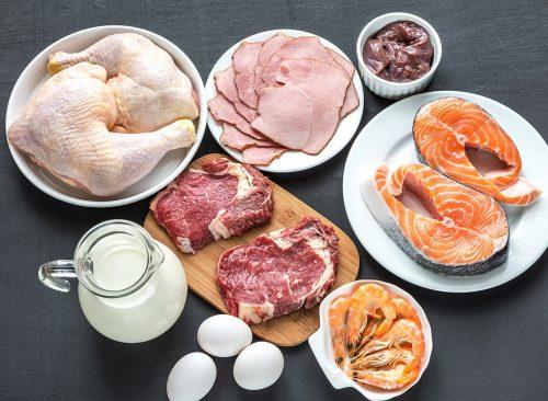 Sources de protéines