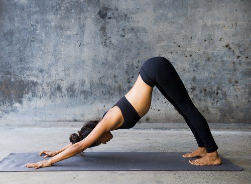 Femme, faire, yoga, chien, descente, pose