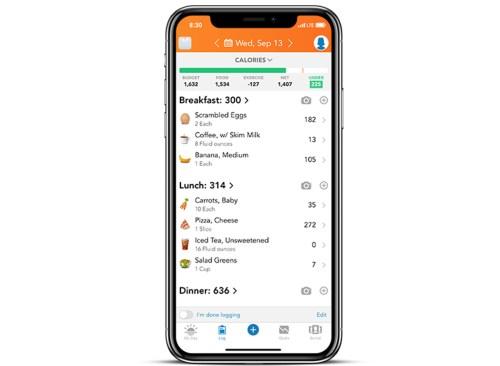application Lossit sur iPhone