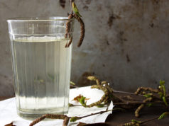 L'eau de bouleau