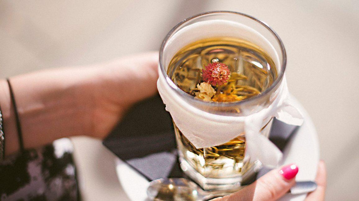 thé d'échinacée dans un verre plantes médicinales