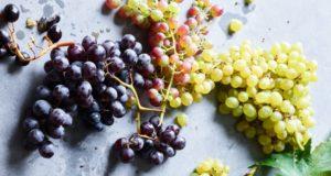 16 types de raisins fascinants