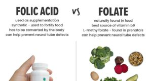 Acide folique vs folate