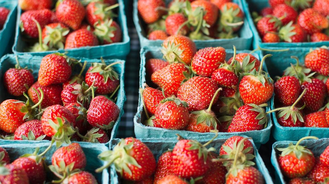 paniers de fraises fraîches