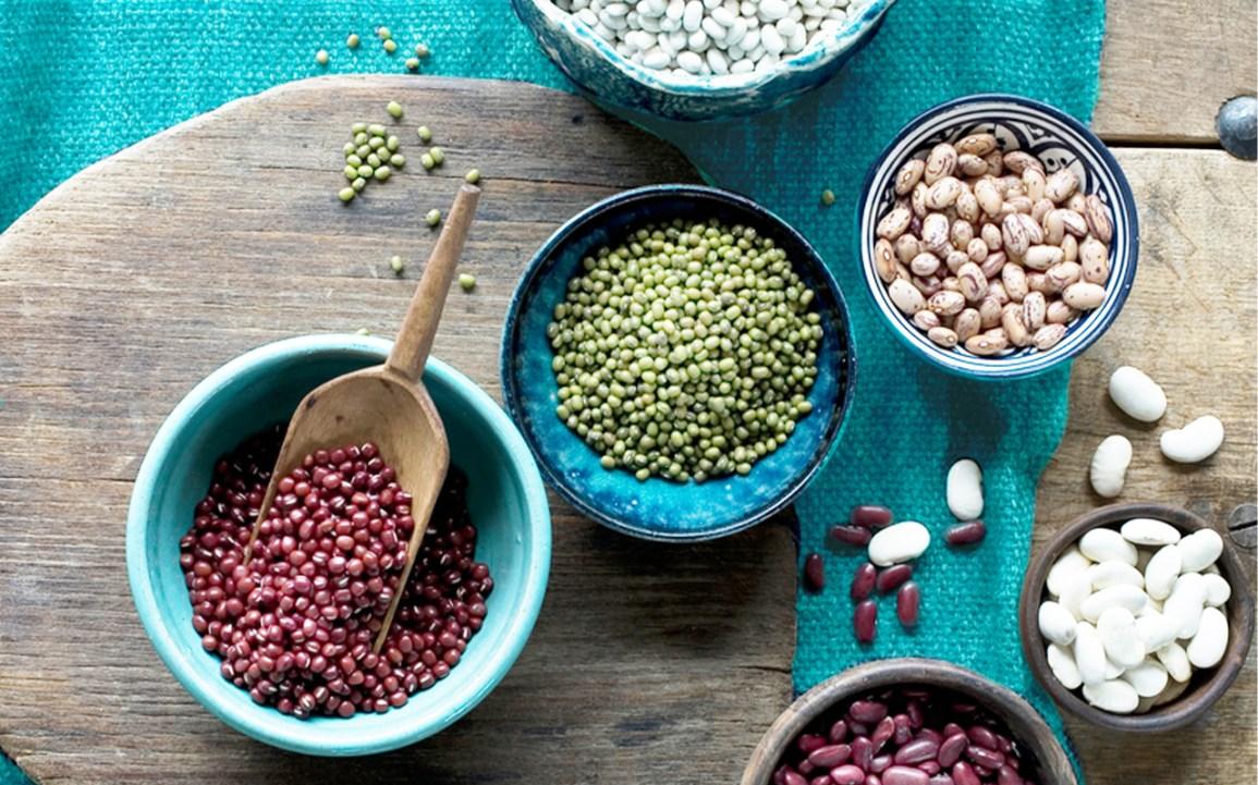Différents types de haricots dans différents bols