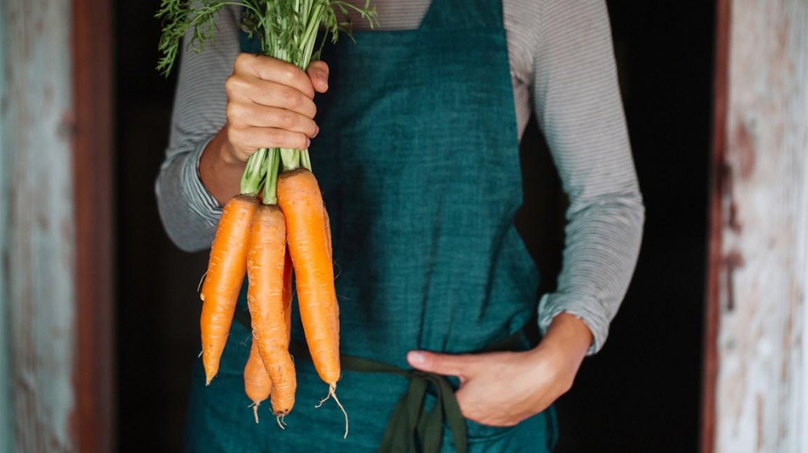 Personne tenant un tas de carottes