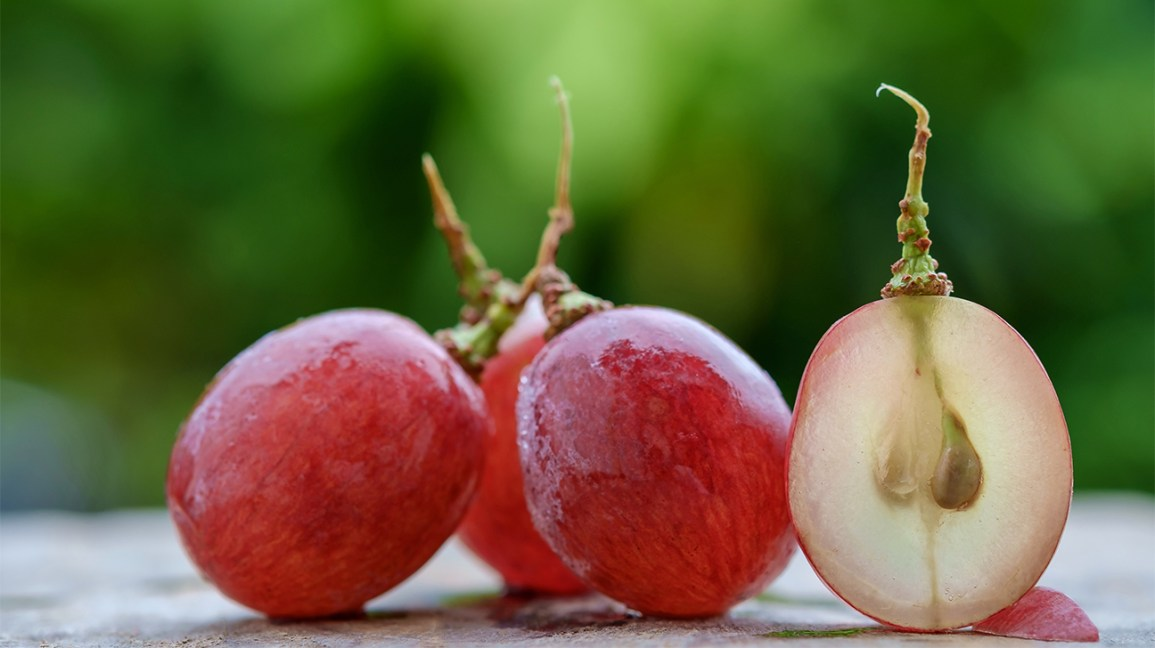 Raisins plus un raisin coupé-ouvert avec des graines