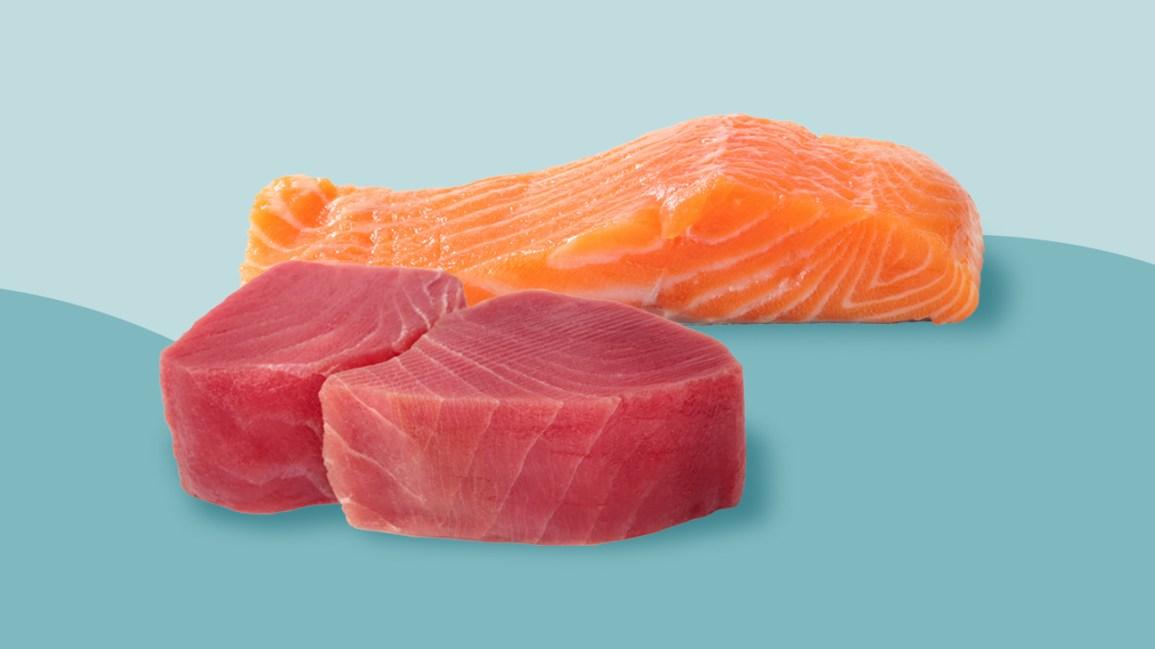 Comparaison thon vs saumon
