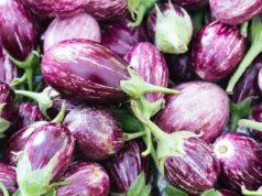 recettes d'aubergines végétaliennes