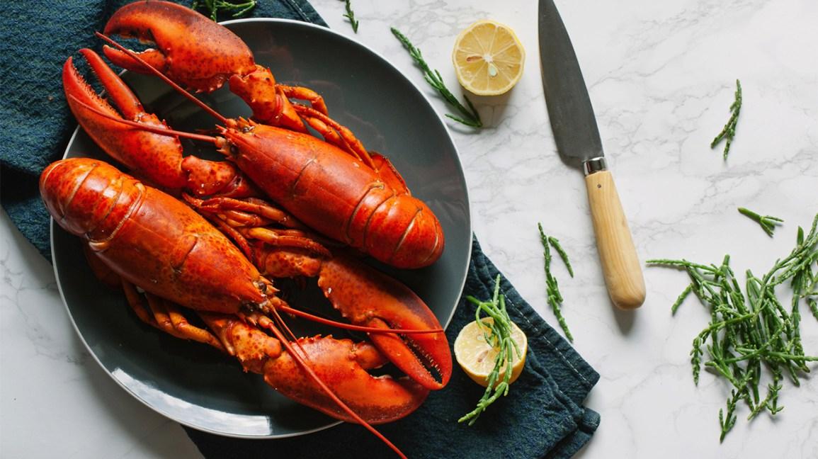 homard cuit sur une assiette