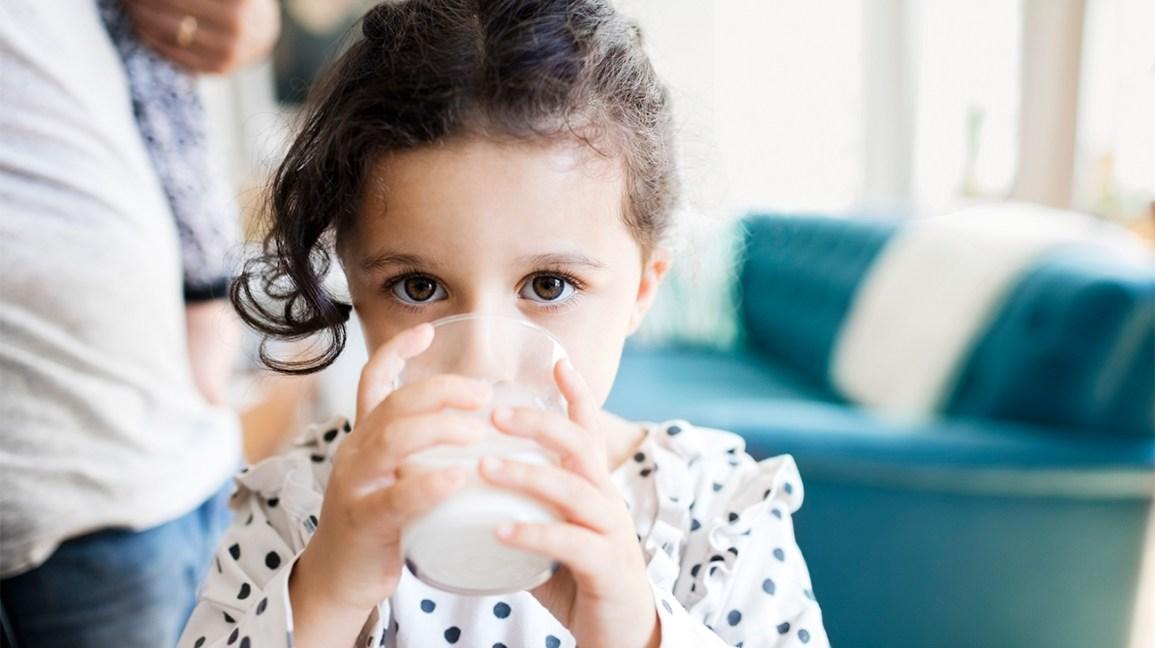 enfant buvant du lait de vache