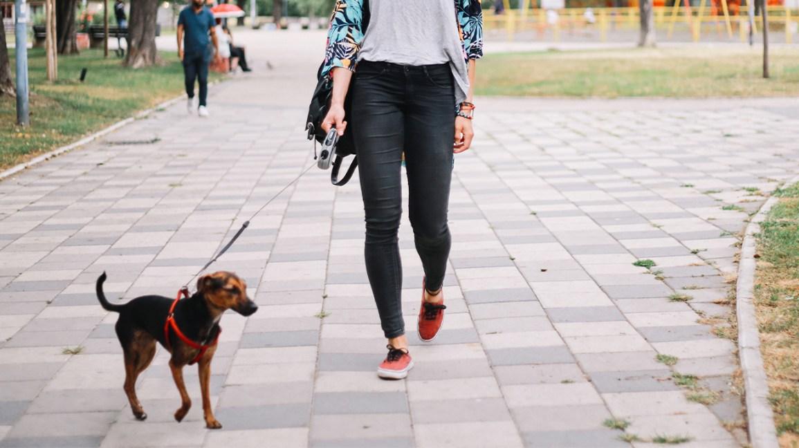 femme qui promène son chien à l'extérieur