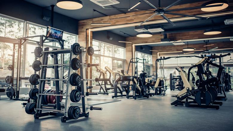 Barres de poids différent sur rack dans une salle de sport