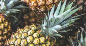 feuilles d'ananas