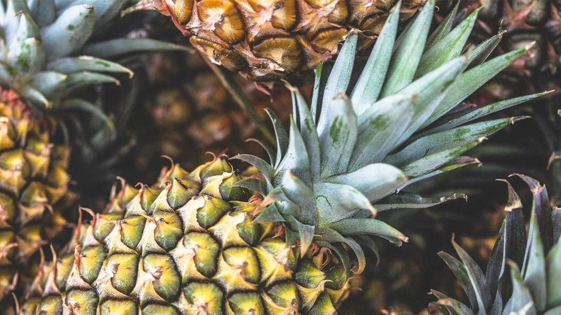 feuilles d'ananas : ananas cru avec des feuilles
