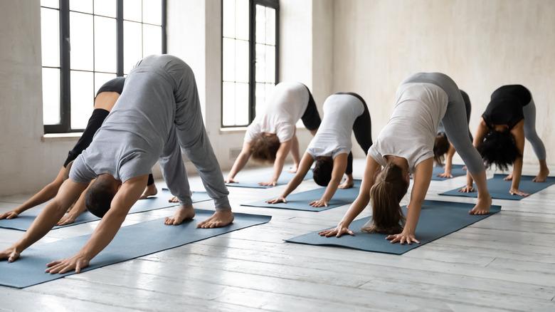 personnes en cours de yoga